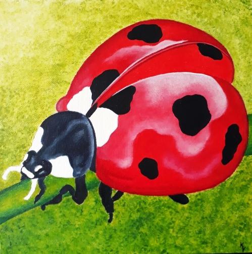 acryl op canvas 24x24